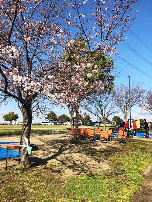 山田池公園お花見バーベキュー