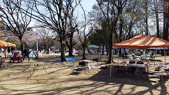 久宝寺緑地公園お花見バーベキュー