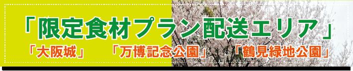 大阪 城 バーベキュー ビール 配達